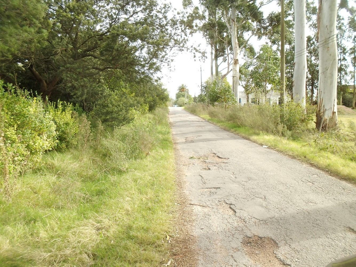 chacra sobre camino del andaluz  prox . camino mendoza