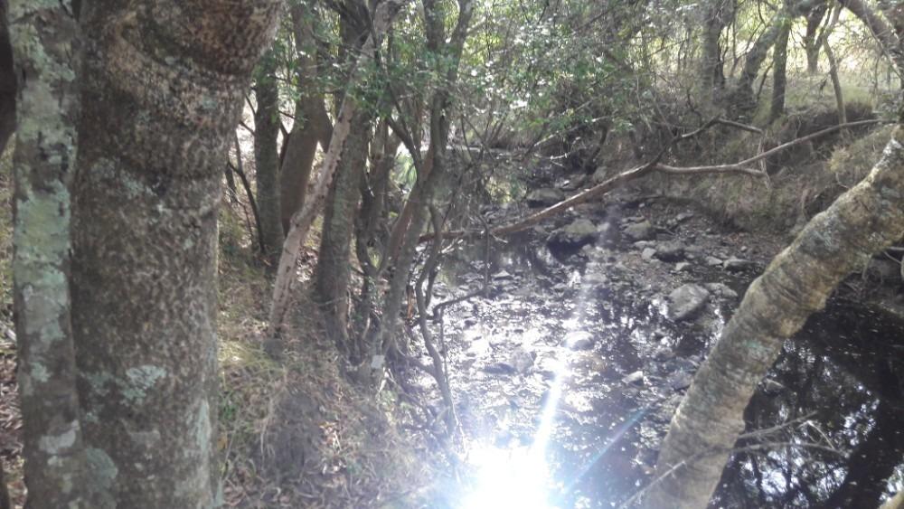 chacras de 3 hectáreas, con y sin arroyo