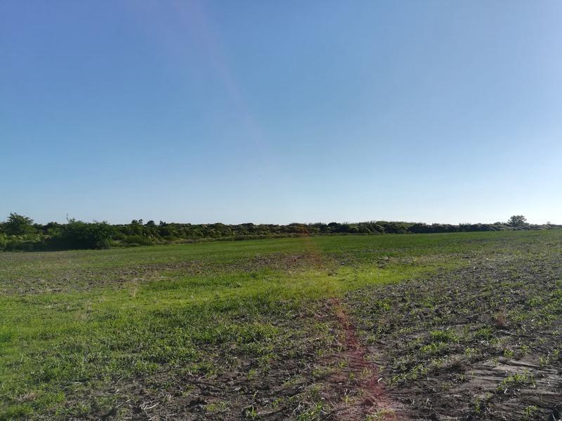 chacras de 5 a 6 hectáreas en riachuelo