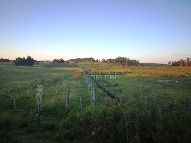 chacras en punta del este, la barra, camino euguzquiza- ref: 21571