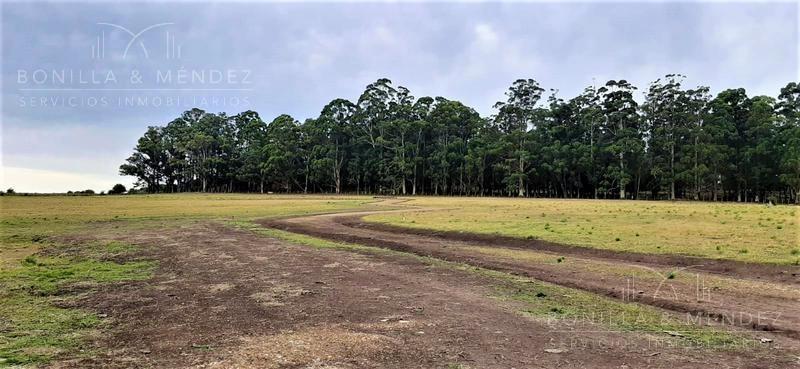chacras en ruta interbalnearia zona de piriápolis.