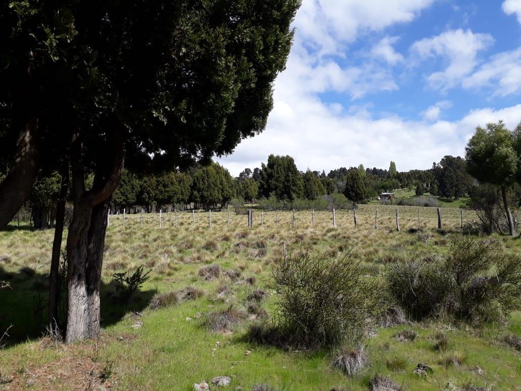 chacras en ruta n° 71 camino al parque nacional los alerces.