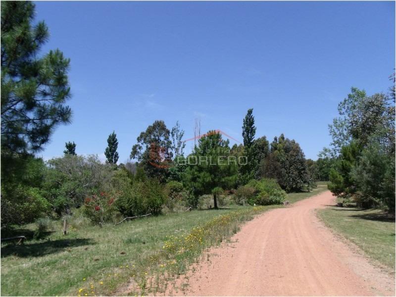 chacras en uruguay, camino lussich- ref: 21583