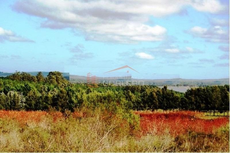 chacras en uruguay, punta del este, laguna del sauce- ref: 21224