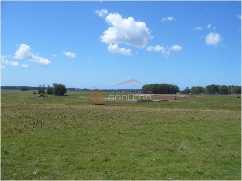 chacras en uruguay, punta del este, ruta 104- ref: 20583