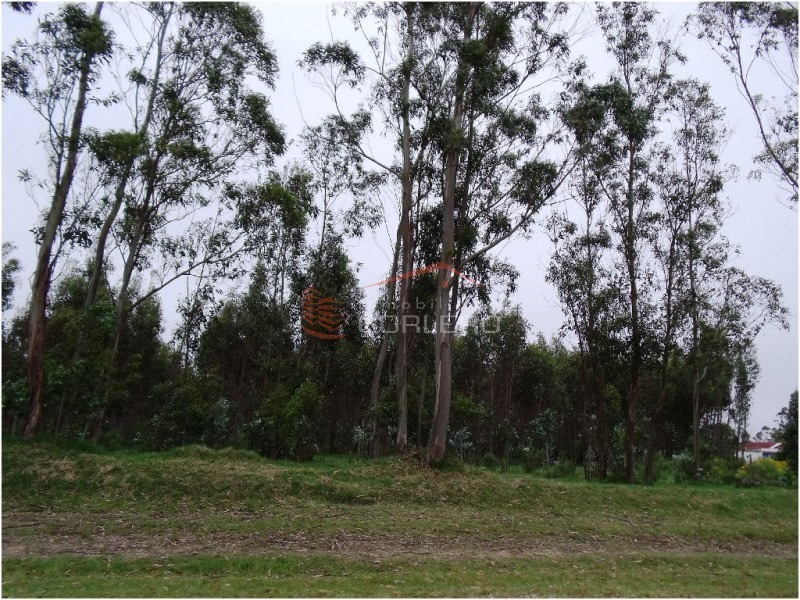 chacras en uruguay, punta del este, ruta 104- ref: 20927