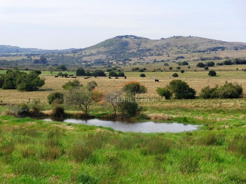 chacras en uruguay, punta del este, ruta 12- ref: 21187