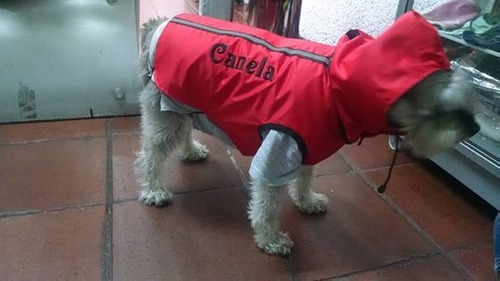 chaleco exotic. impermeable  para perrito mediano