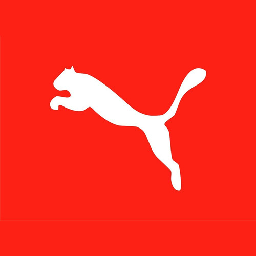 champión calzado puma deportivo running de hombre mvd sport