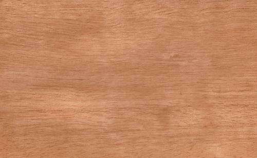 chapa de madera natural cedrillo