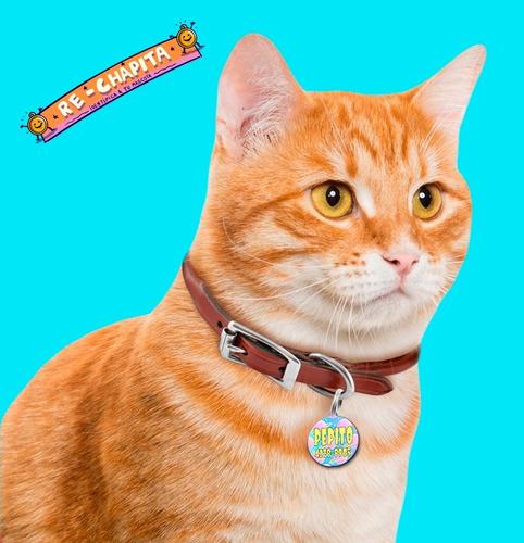 chapa identificatoria chica para gatos