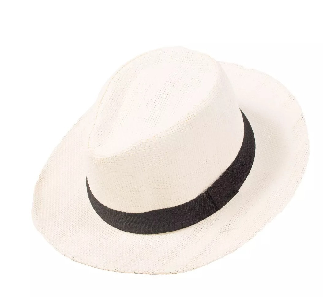 960506d2c7c84 Chapéu Panamá Moda Casual Praia Feminino Masculino Aba Larga - R  19 ...