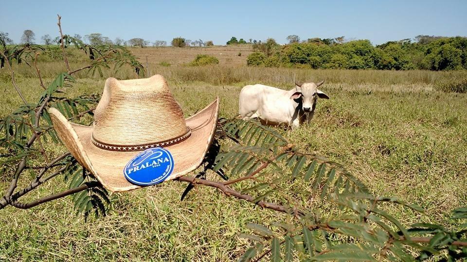 chapéu pralana country rancho 16 x. Carregando zoom. 8462e3c175f