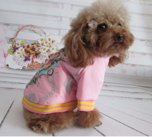 chaqueta para mascota perro