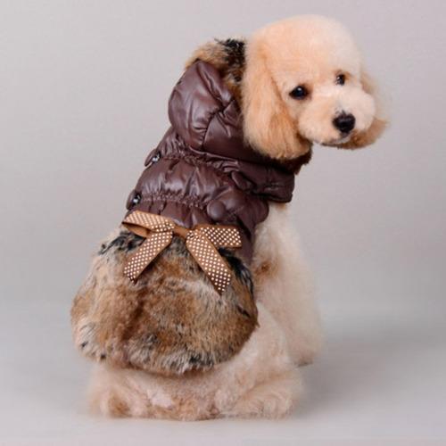 chaqueta perro animal