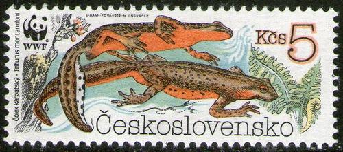 checoslovaquia sello mint mint fauna = tritón año 1989
