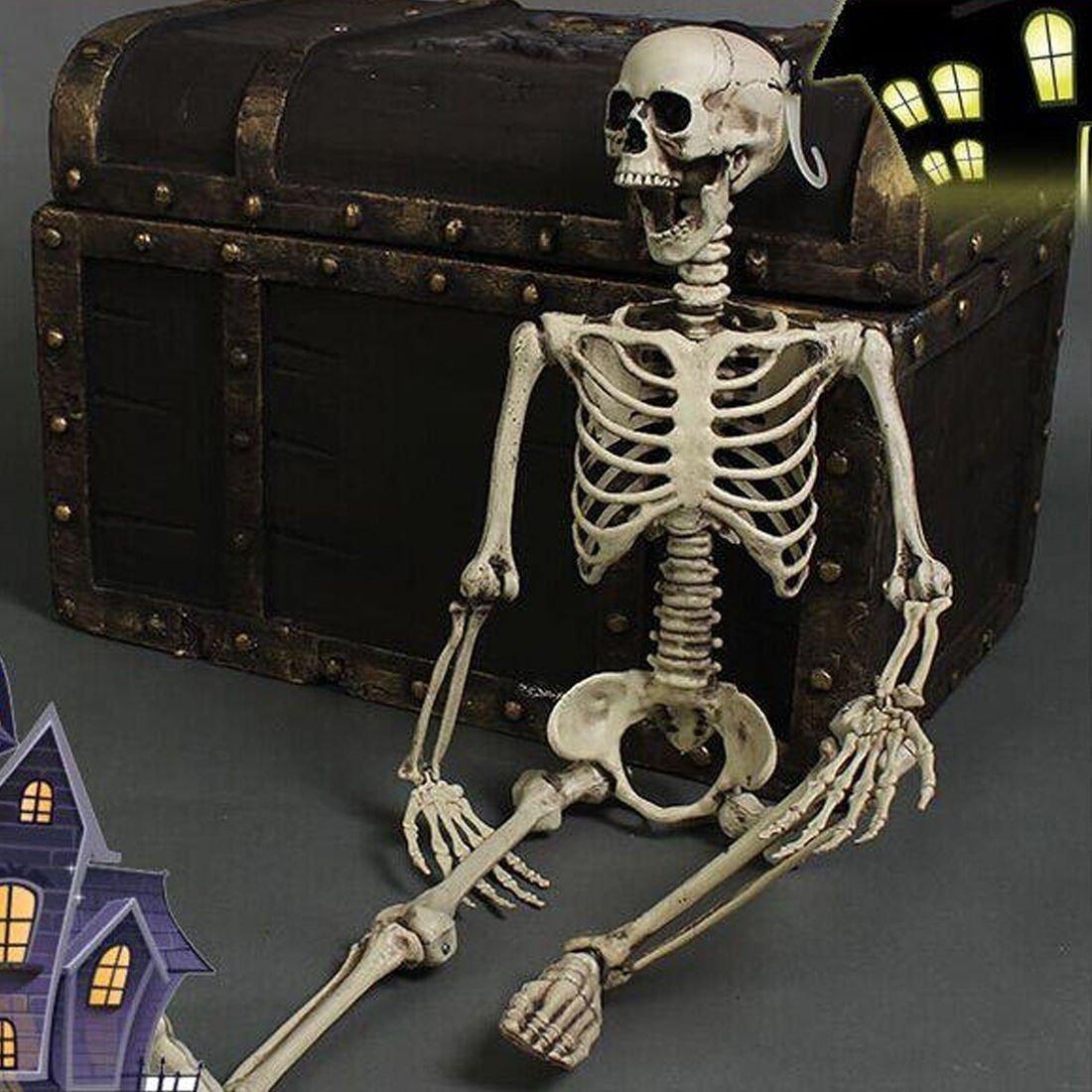 Chichic 3 Pies Esqueleto Posible Halloween Esqueleto De H ...