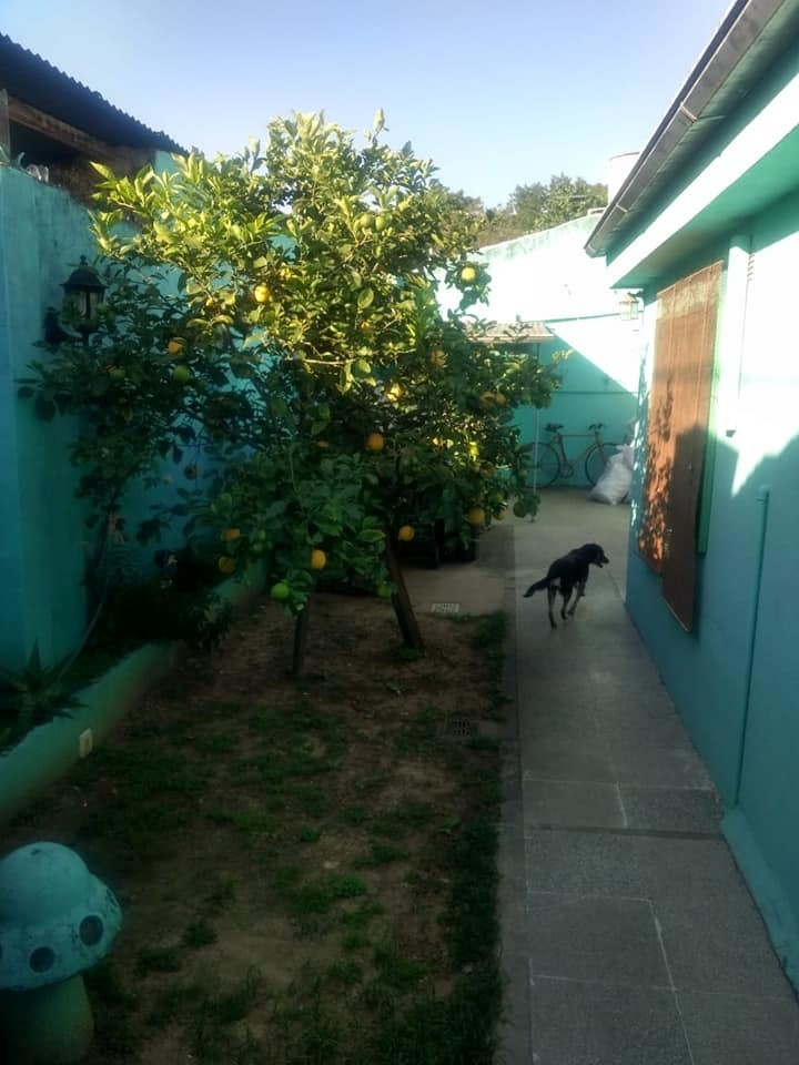 chilavert, 3 ambientes, tipo casa, patio, jardin