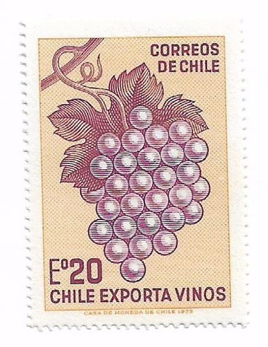 chile exporta vinos