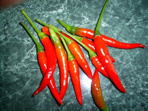 chile picante tailandés - de tailandia por chia tai (90