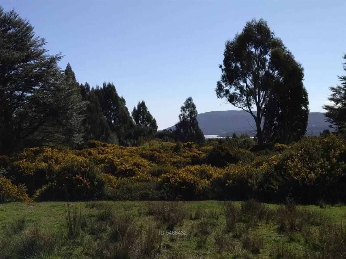 chiloé, vista lago huillinco