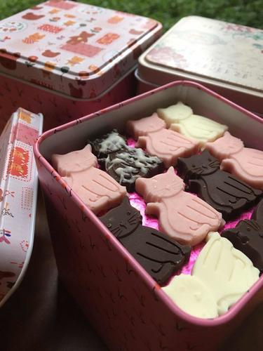 chocolates en forma gato (165 unidades en lata), $9.990.-