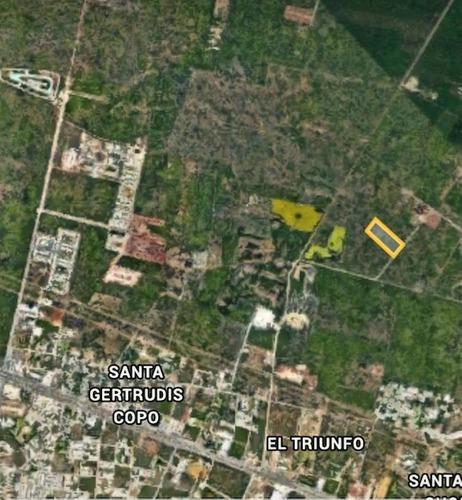 cholul terreno por la isla son 23,173.51 m2