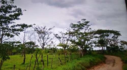chulada de terreno rustico en san josé cotzacan, oaxaca