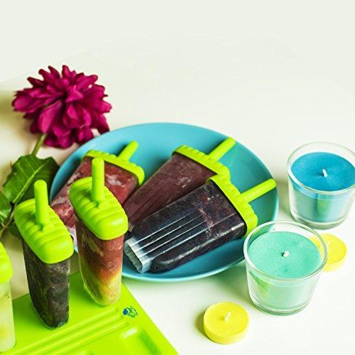 chuzy chef ice pop maker molde para paletas- envío gratis