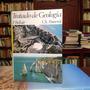 Tratado De Geología. P. Bellair Y Ch. Pomerol. Vicens-vives.