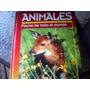 El Gran Libro De Los Animales, Fauna De Todo El Mundo