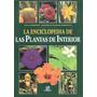 La Enciclopedia De Plantas De Interior