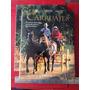 Carruajes / Folklore Caballos Huaso Aperos Campo