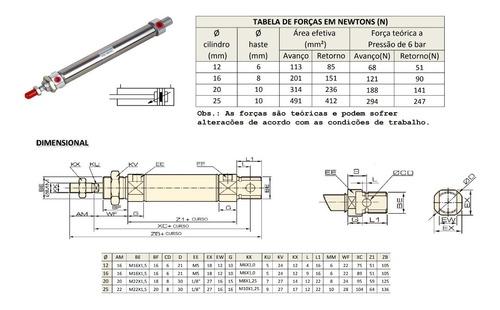 cilindro pneumatico mini iso dupla ação ø 25 x 100 curso