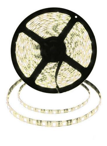 cinta tira led luz calida 5mts+transformador 79584/ fernapet