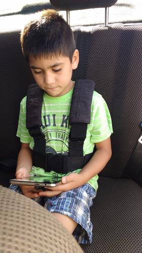 cinturon, arnes de seguridad para niños.