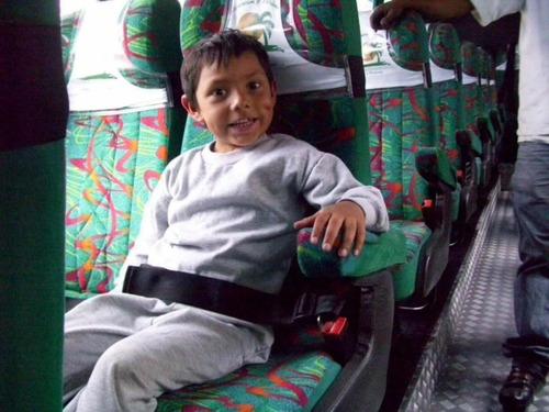 cinturón de seguridad 2 puntos carro tapiforros 7 de agosto