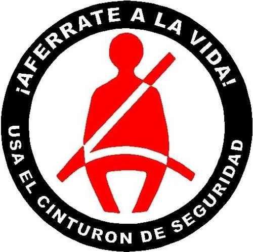 Cinturon De Seguridad Universal De 3 Puntos Bs 6 490 00