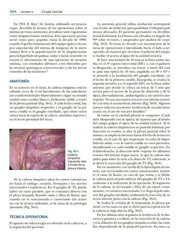 Kostroma la cirugía vascular