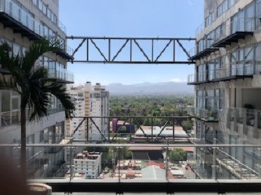 city tower park coyoacan