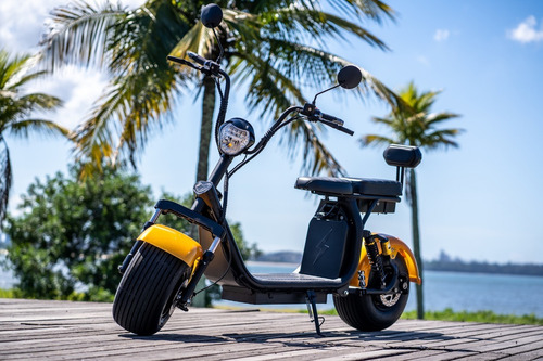 citycoco scooter elétrica 1.500w 2 lugares.