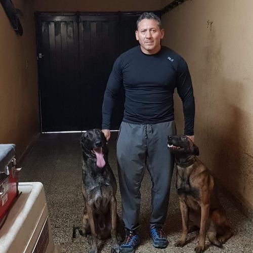 clases de adiestramiento canino en zona oeste