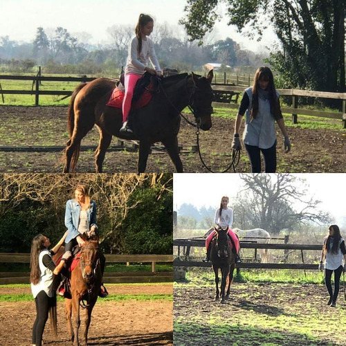 clases de equitacion  , pensionado de caballos.