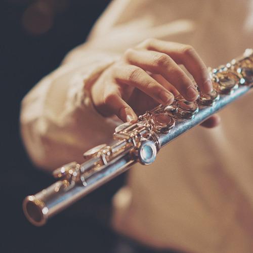 clases de flauta traversa en video + solfeo