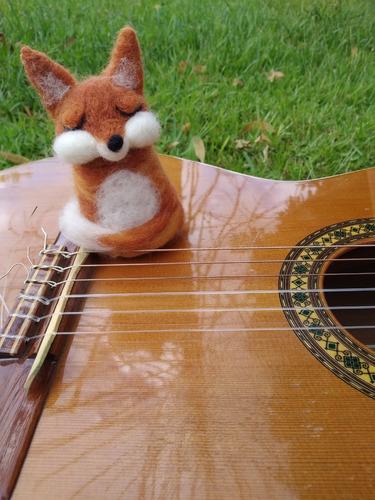 clases de guitarra en ciudad de la costa
