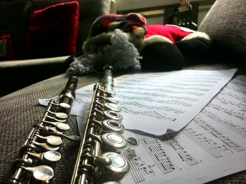 clases de música y flauta transversa