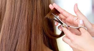 clases de peluquería a domicilio 100% practicas