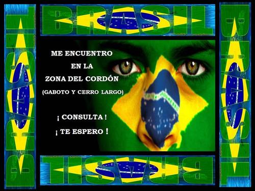 clases de portugués: $ 300 / online / verónica 094.838.410