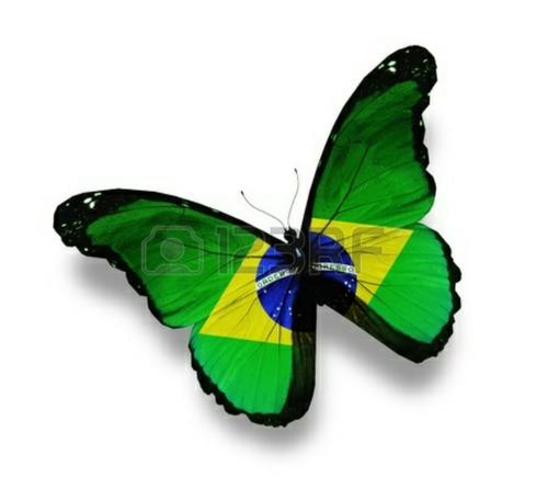 clases de portugues con profesora brasilera