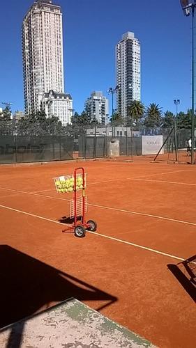 clases de tenis, profesor de la aat en nuñez y palermo